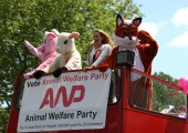 Animal Welfare Party Battle Bus Takes to the Streets of Tower Hamlets in Final Days of Mayoral Election Campaign