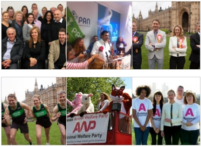 Animal Welfare Politics 2015 – The Year in Review
